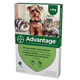 Advantage spot on flea treatment for cats, small dogs and rabbits