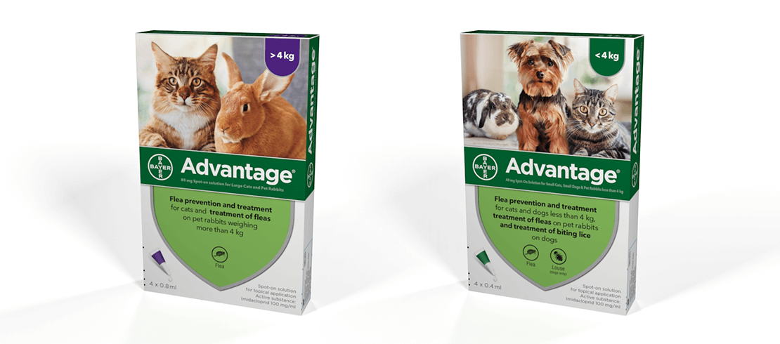Advantage® spot-on treatment for cats