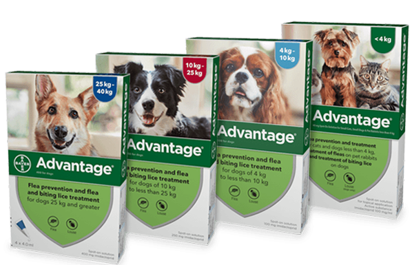 Advantage Dog Flea Treatment Range