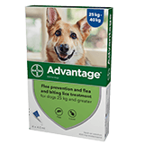 Advantage spot on flea treatment for dogs over 25kg