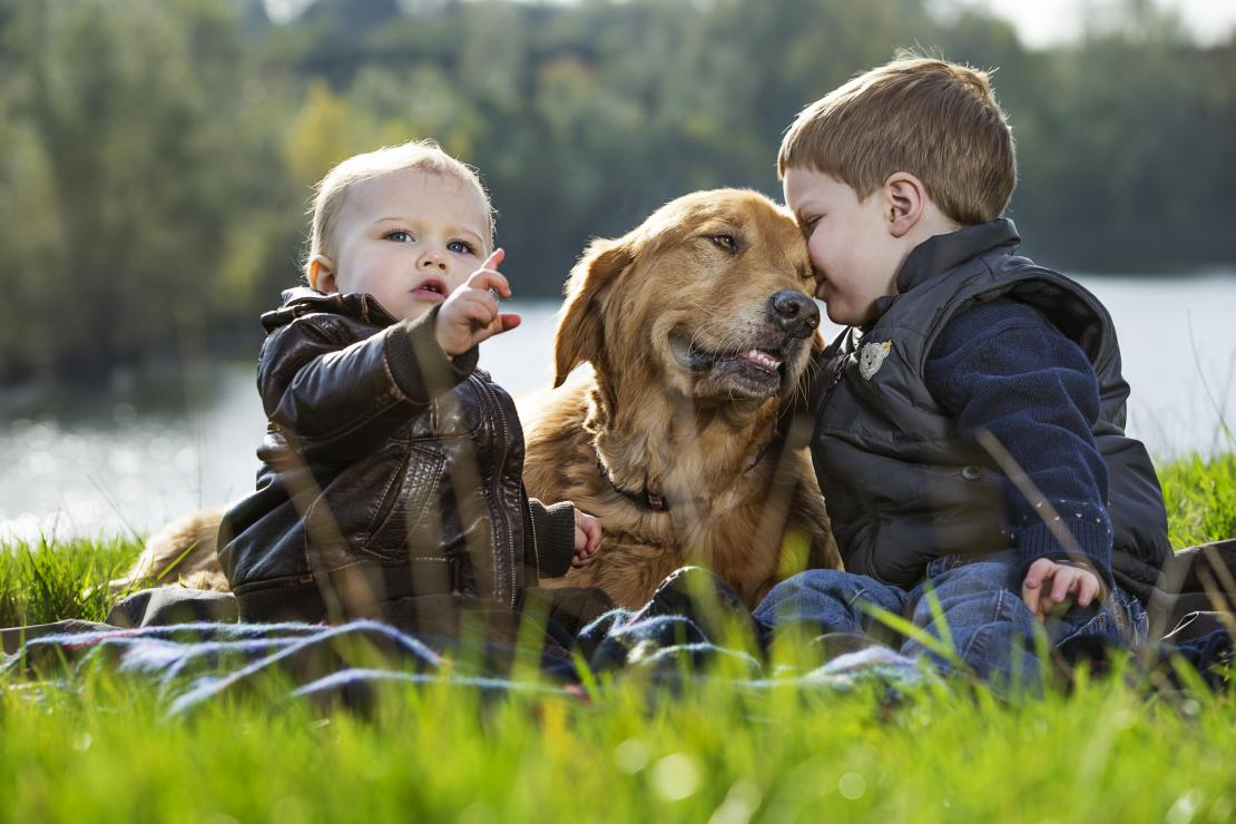 Young boys play with cute dog in garden