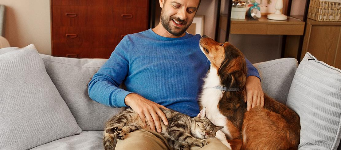 Pet owner relaxing on the couch with his cat and dog, both protected against ticks with their Seresto flea and tick control collars