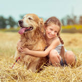 young girl with golden retriever