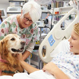 therapy dog therapy dog visits boy in hospital